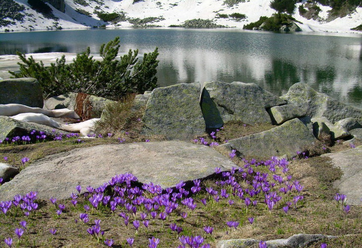 Национальный парк Пирин в Болгарии