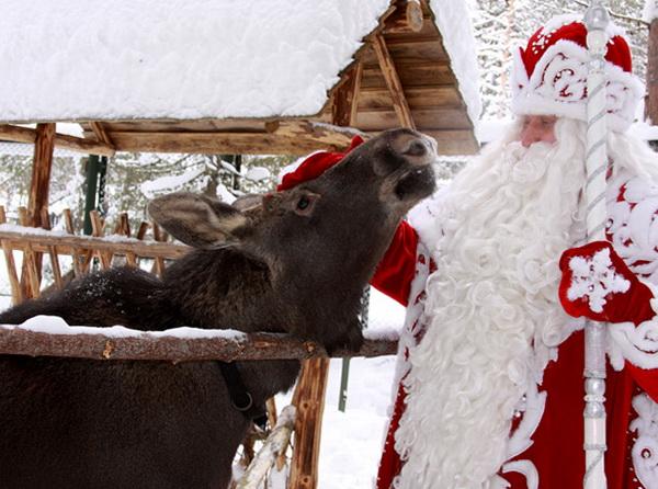Вотчина Деда Мороза в Великом Устюге.  Зоопарк