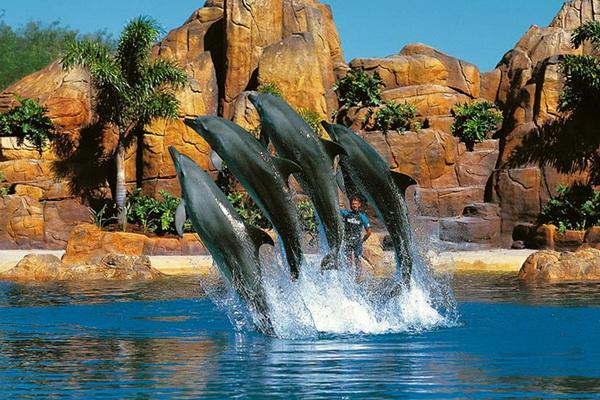 Отдых с детьми в Австралии. Sea World
