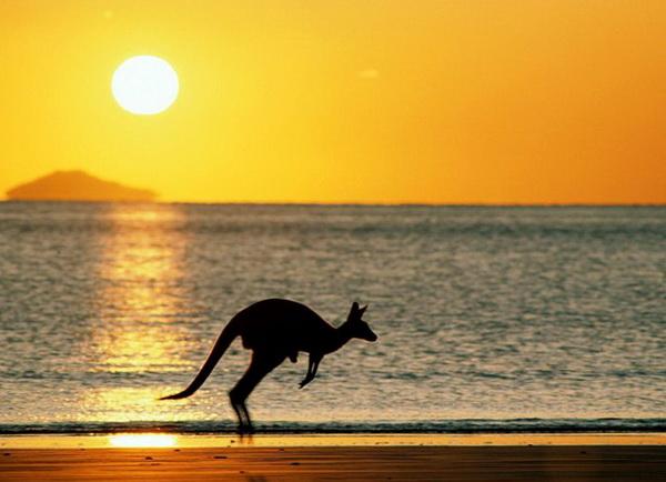 Путешествие в Австралию с детьми