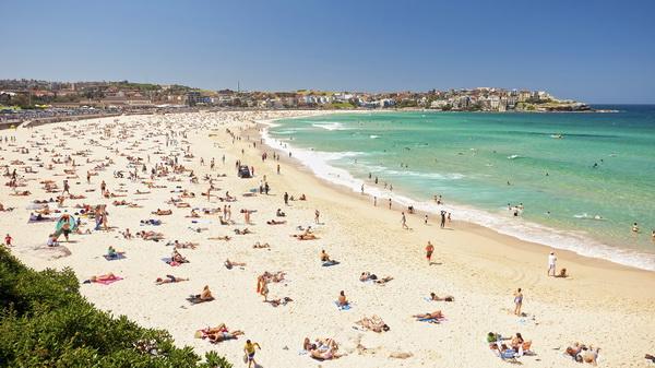 Австралия с детьми. Пляжи Сиднея