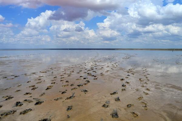 Соленое озеро Эльтон. Волгоградская область