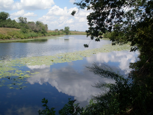 Река Бузулук