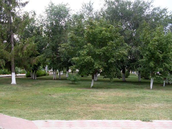 Парк в станице Преображенской