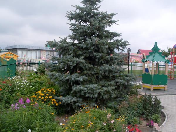 Детский городок у Спасо-Преображенского храма