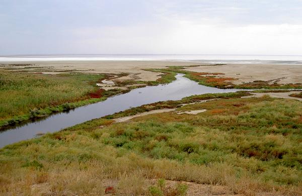 Река Сморогда. Озеро Эльтон