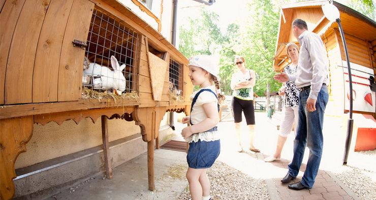 отдых с ребенком на природном курорте яхонты Ногинск подмосковье
