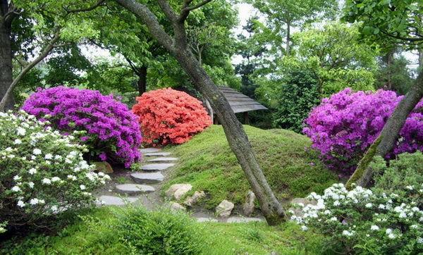 Пражский ботанический сад в Праге