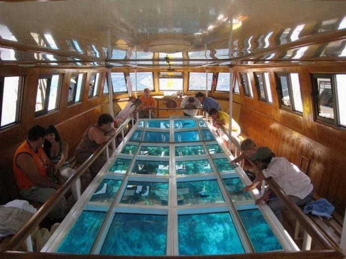 лодка с прозрачным дном. отдых с ребенком в египте