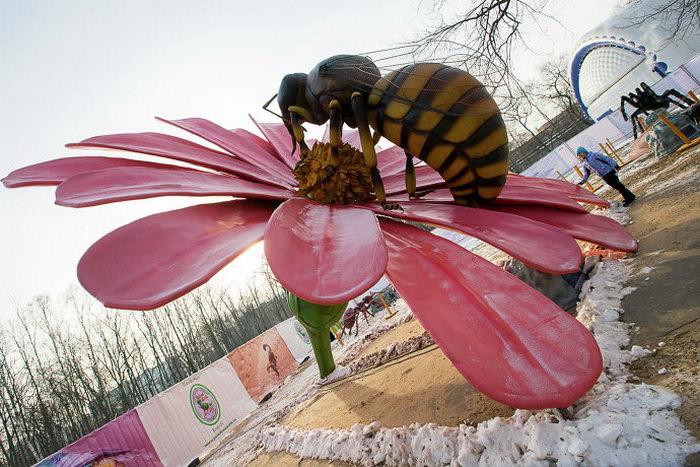 Парк гигантских насекомых ВВЦ Москва