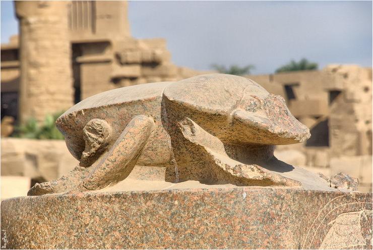 Статуя жука скарабея в Луксоре, Египет