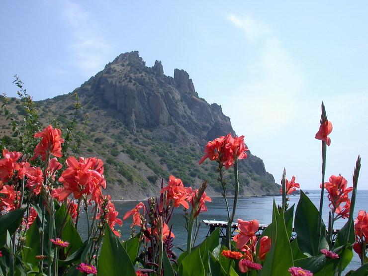 Семейный отдых в июле в Крыму