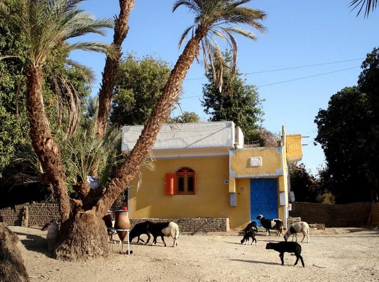 Нубийская деревня в Асуане. Семейный отдых в Египте.