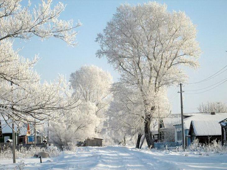 Деревня Барсуково