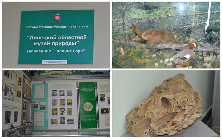 Музей Галичья гора